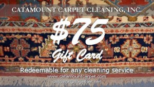 Carpet Cleaning Gift Card